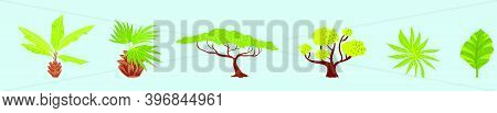 Set Of Exotic Vegetation Cartoon Icon Design Template With Various Models. Modern Vector Illustratio