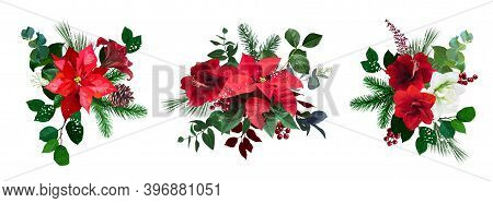 Merry Christmas Floral Vector Bouquets Set. Red And White Amaryllis, Poinsettia, Green, Burgundy Bra