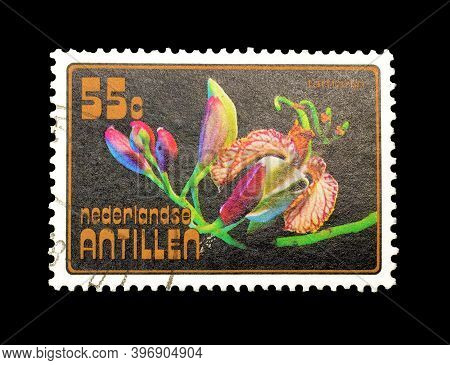 Netherlands Antilles - Circa 1977 : Cancelled Postage Stamp Printed By Netherlands Antilles, That Sh