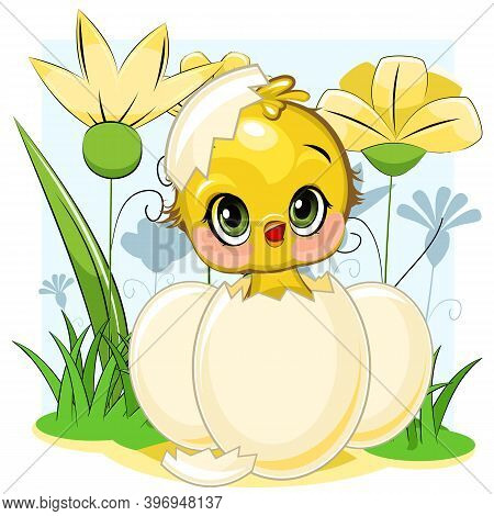 A Little Chick Hatched From An Egg. Funny Chick. Cute And Funny Baby Bird. The Isolated Object On A