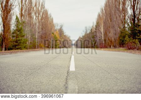 Chernobyl Road In Exclusion Zone. Radioactive Zone In Pripyat City - Abandoned Ghost Town. Ukraine