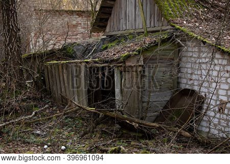 Ruins Of An Old Wooden Abandoned House In The Autumn. Barn In Pripyat City In Chernobyl Exclusion Zo