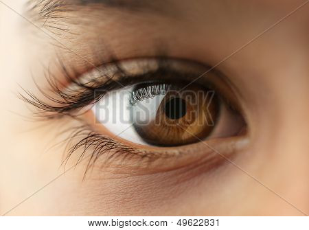 Child's human Eye Macro close up image