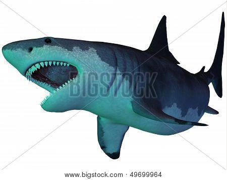 Megalodon Shark Underwater