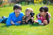 Three happy, children lying on grass playing with small dog. poster