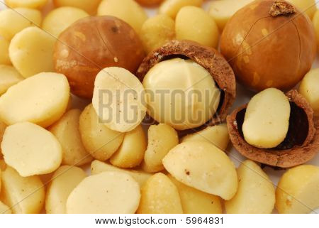 Background Of Macadamia Nuts