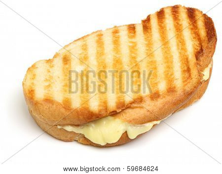 Toasted cheese sandwich on white background.