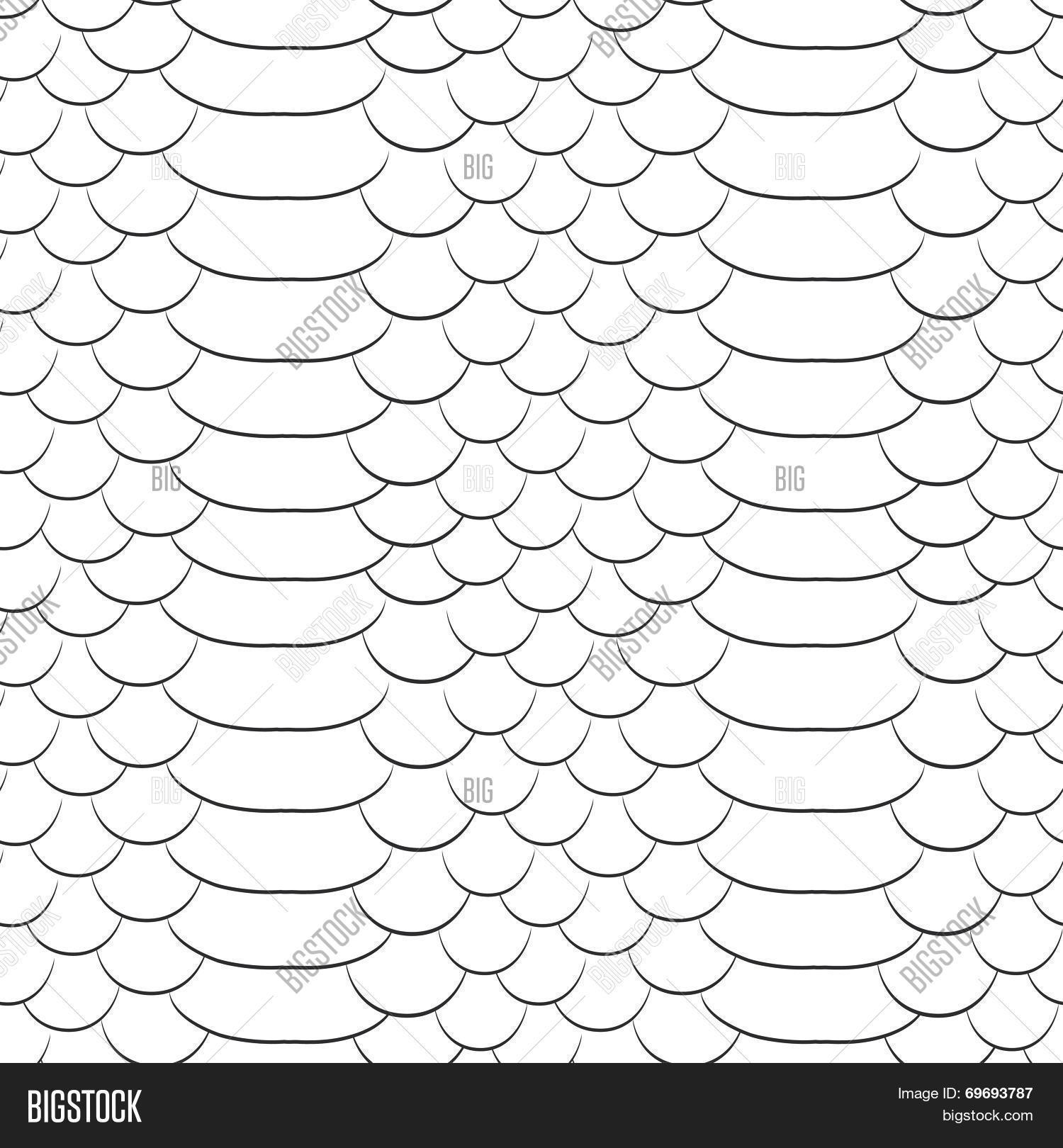 Snake Skin Texture Vector Photo Free Trial Bigstock