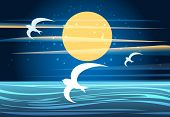 A vector illustration of summer night seascape with full moon and flying seagulls poster