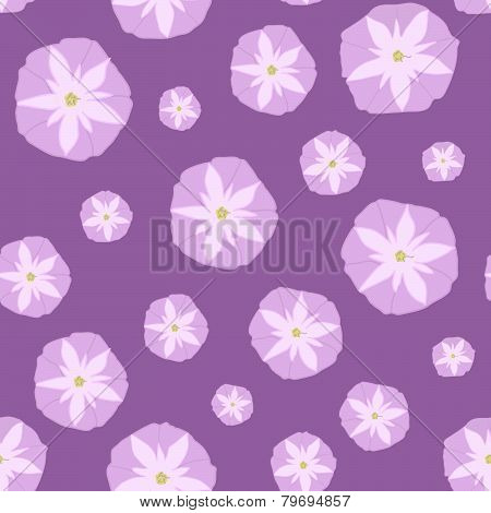 Simple Seamless Pattern with Pink Ipomoea Flowers.