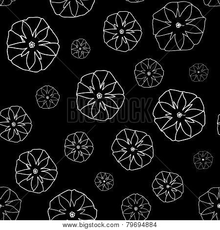 Black and White Seamless Pattern with  Ipomoea Flowers.