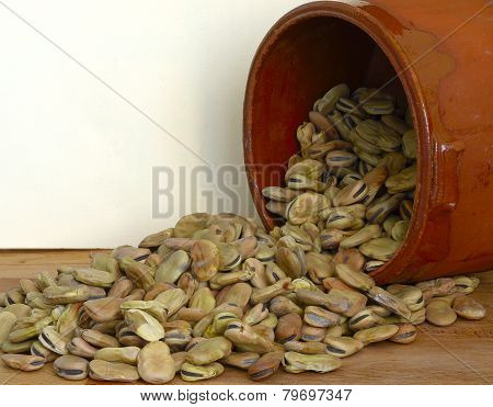 dried fava beans poured from a container
