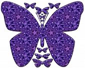 Big and small violet butterflies, on white background. Illustration. poster
