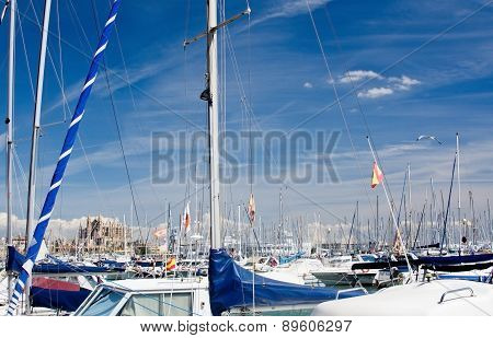 Cathedral seen through masts on the Paseo Maritimo