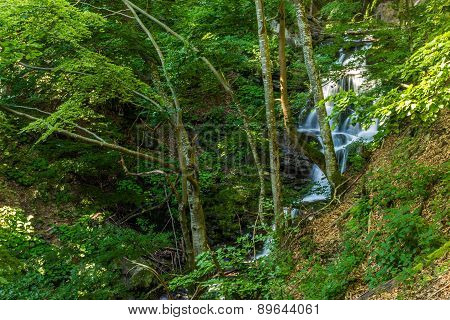 Beautiful Waterfall Comes Out Of A Huge Rock In The Forest
