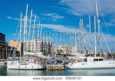 Yachts in marina and hotels along the Paseo Maritimo