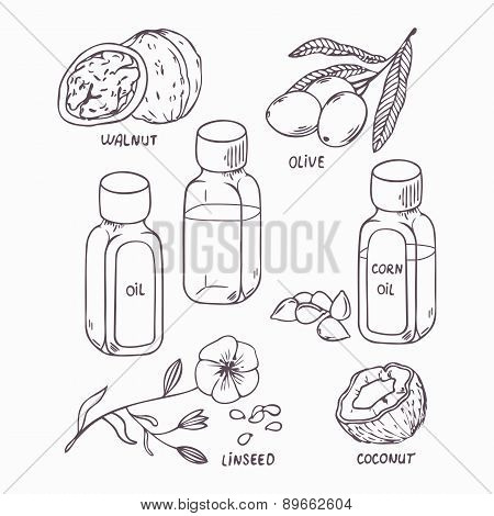 Healthy oil set in outline style. Coconut, walnut, olive, corn and linseed