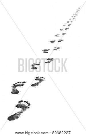 Foot steps - isolated on whine background