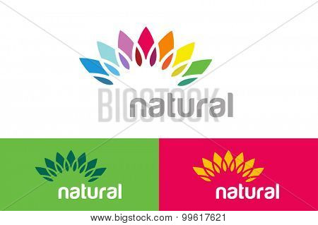 Abstract vector colored flower similar to sun logotype. Spa, beauty, nature design, nature care, health and healthy products. Abstract flower. Flower icon. Flower logo. Colored nature logo. Star logo