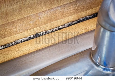 mildew or mold growth developing on a kitchen counter behind sink