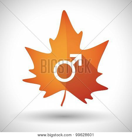 Autumn Leaf Icon With A Male Sign