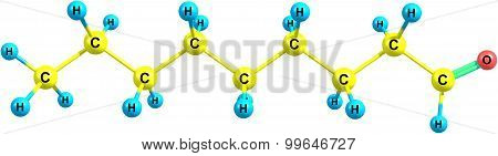 Nonanal molecule isolated on white