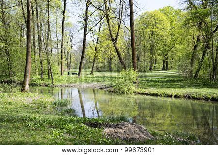 a nice photo of the english garden in Munich in spring