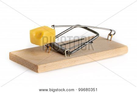 Mouse Trap Isolated On A White Background