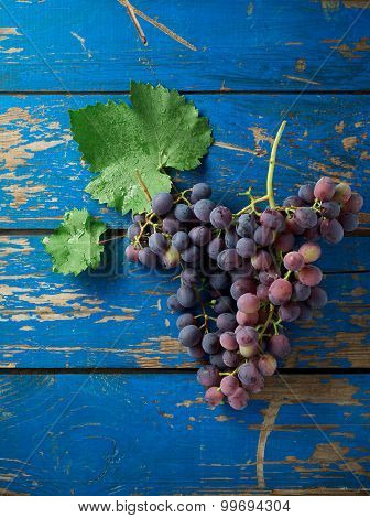 Dark Grapes