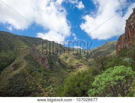 Gran Canaria, Barranco De Los Cernicalos