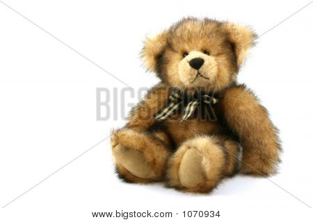 Caramel Teddy Bear