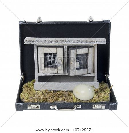 Chicken Coop In A Briefcase