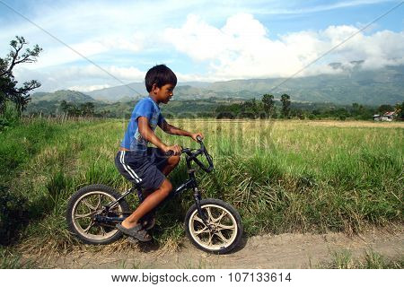 boy rides a bicycle along a rice field