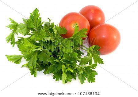 Fresh Vegetables And Potherb For Salad