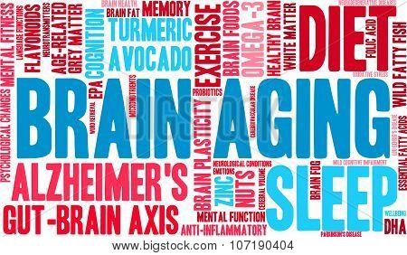 Brain Aging Word Cloud