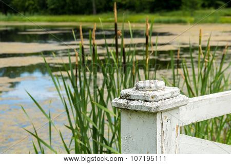 Wooden Post At Green Pond.