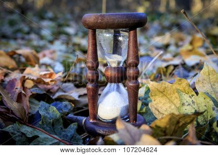 Old hourglass among autumn leafage