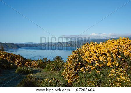 Island of Chiloe