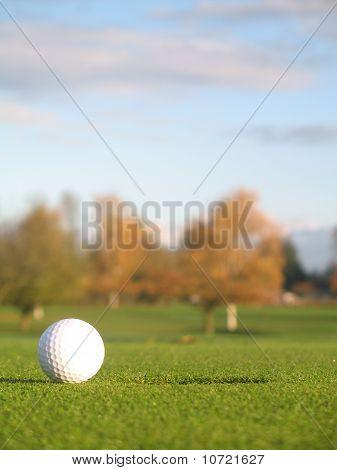 Closeup Golfball on Green
