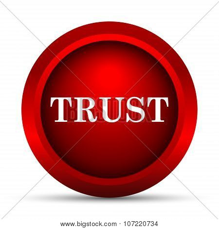 Trust icon. Internet button on white background. poster