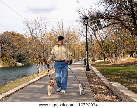 Man Walking In The Park With 2 Dogs