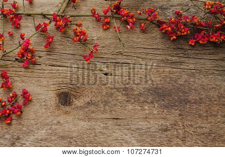 Frame Of Branches With Red Flowers On A Wooden Background