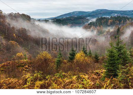 Misty Morning On Dukes Pass1