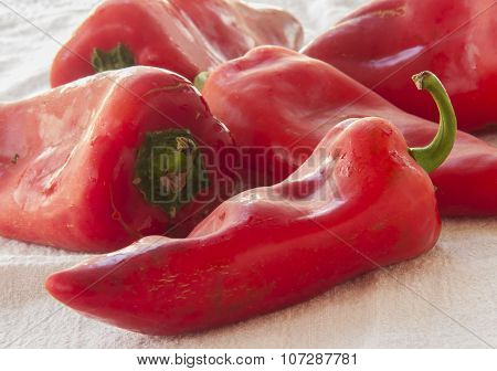 Healthy food. Fresh vegetables. Peppers on a white background.