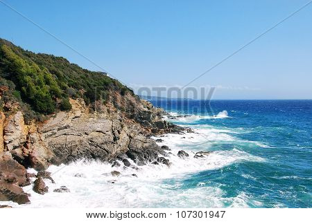 Rocky Italian coastline on a bright blue sky day, with blue water and some coastal vegetation. Strada del Vino Costa degli Etruschi. poster