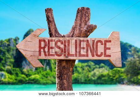 Resilience arrow with beach background