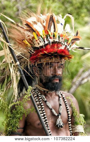 New Guinea Papuan Korafe tribe warrior dressed in vibrant bird of paradise feathers
