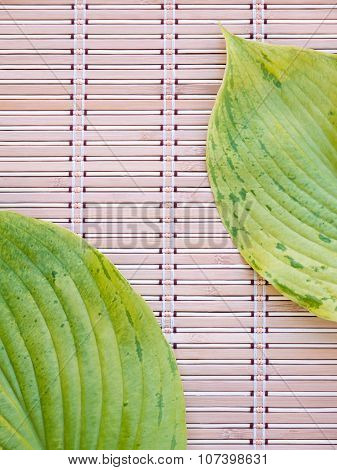 Two green hosta leaves with veins in the opposite corners of the bamboo mat poster