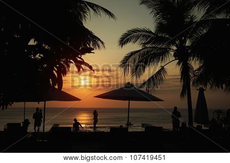 Sunset, beach chairs, palm trees, infinity swimming pool silhouette. Bali