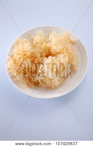 snow jelly fungus chinese traditional medicine for health poster